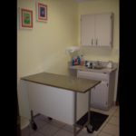 Exam room #3 is slightly different and often utilized for cats or small dogs.